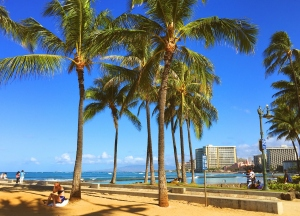 The Hawaiian Dream: 5 Family-Friendly Resorts to Travel by Car